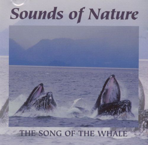 Sounds of Nature: The Song of the Whale