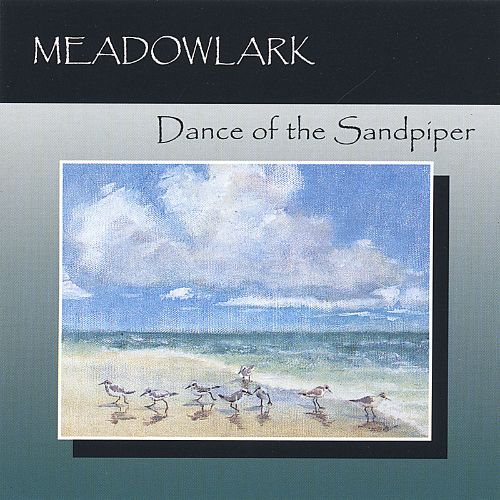 Dance of the Sandpiper