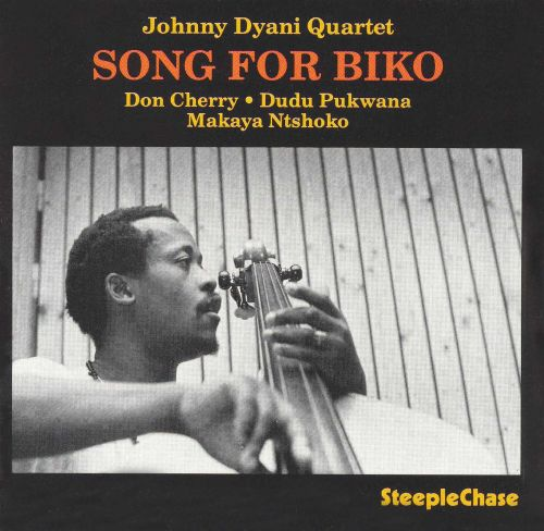 Song for Biko