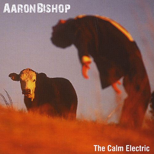 The Calm Electric