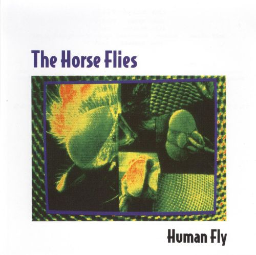 Image result for horse flies human fly