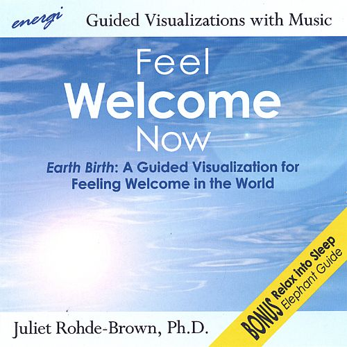 Feel Welcome Now: Guided Visualizations