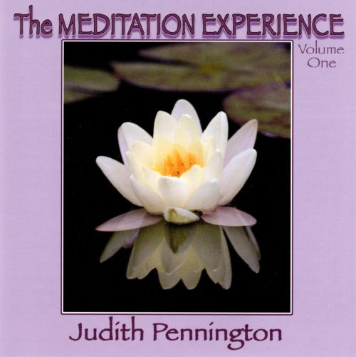 The Meditation Experience, Vol. 1