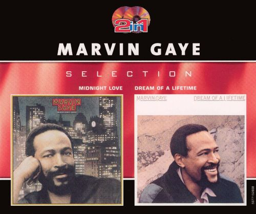Marvin Gaye Dream Of A Lifetime Brani