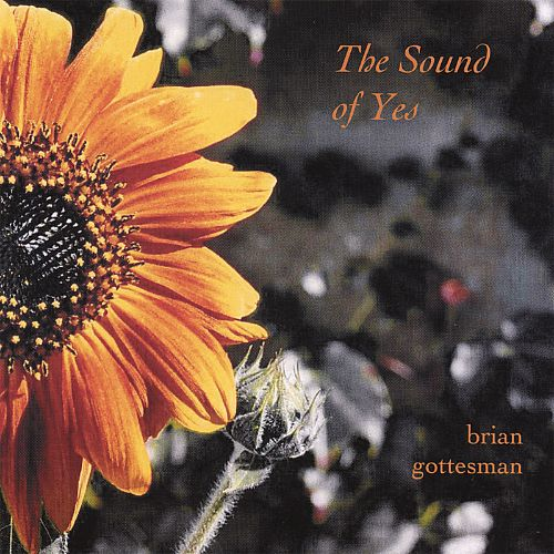 The Sound of Yes