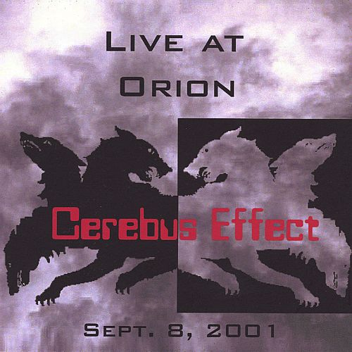 Live at Orion