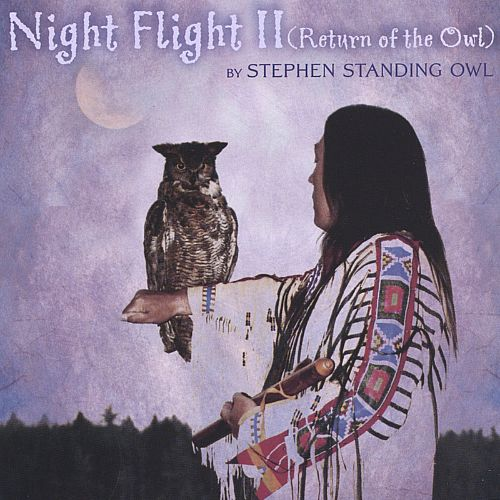 Night Flight II (Return of the Owl)