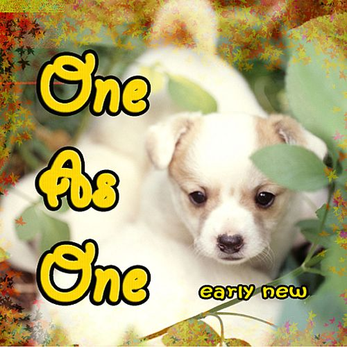 One as One