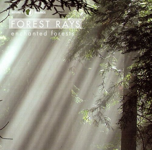 Forest Rays: Enchanted Forests