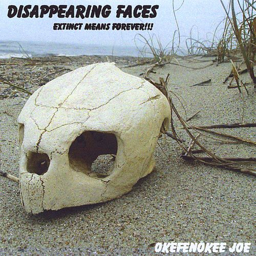 Disappearing Faces