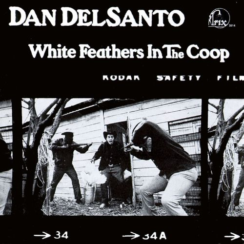 White Feathers in the Coop