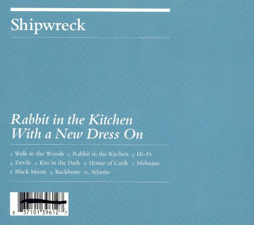Rabbit in the Kitchen with a New Dress On