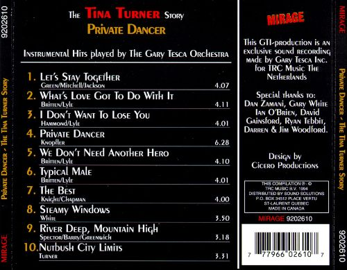 Private Dancer: The Tina Turner Story