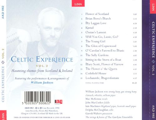 The Celtic Experience, Vol. 2