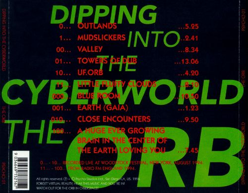 Dipping into the Cyberworld