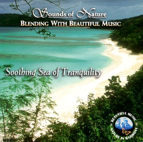 Soothing Sea of Tranquility