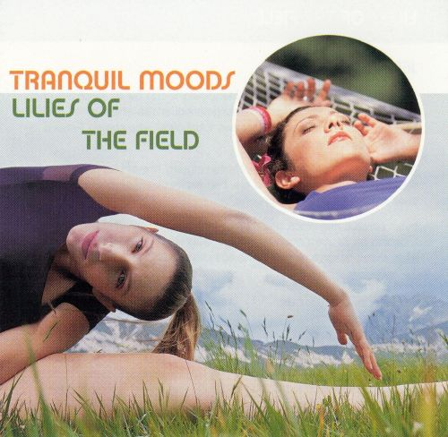 Tranquil Moods: Lilies of the Field