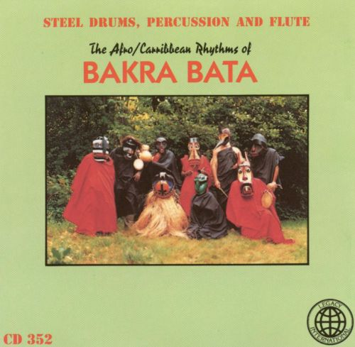 Steel Drums, Percussion & Flute