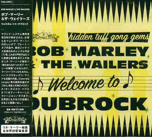 Welcome to Dub Rock