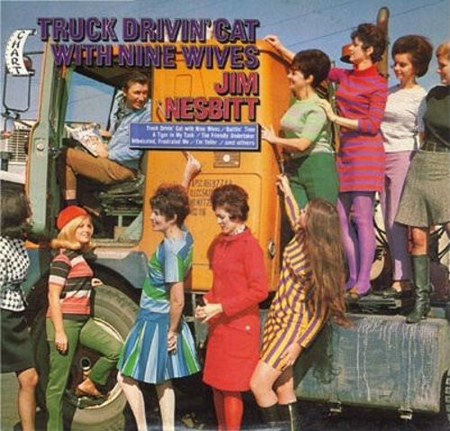 Truck Drivin' Cat with Nine Wives