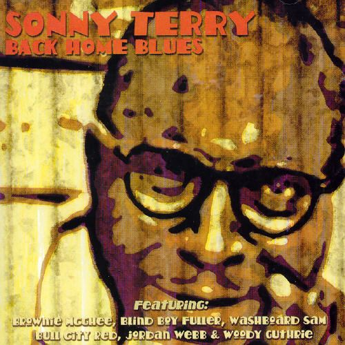 Back Home Blues: Best of Sonny Terry
