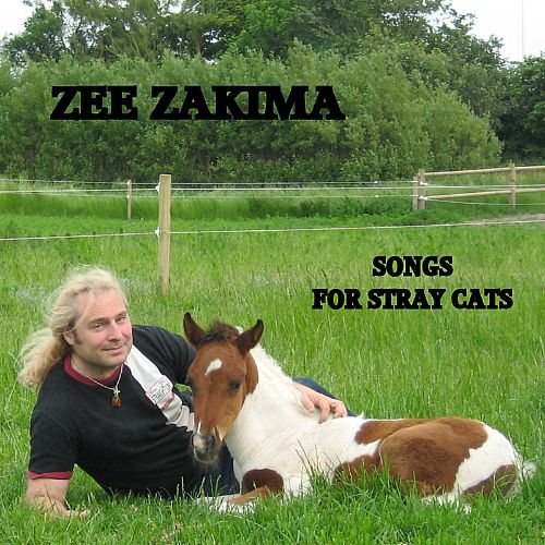 Songs for Stray Cats