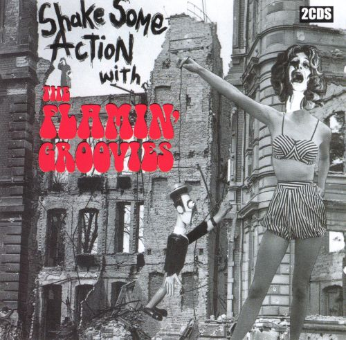 Shake Some Action Live with the Flamin' Groovies