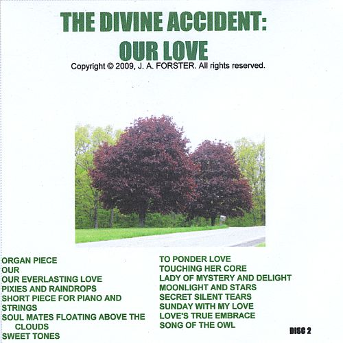 The Divine Accident: Our Love, Pt. 2