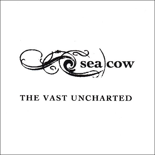 The Vast Uncharted