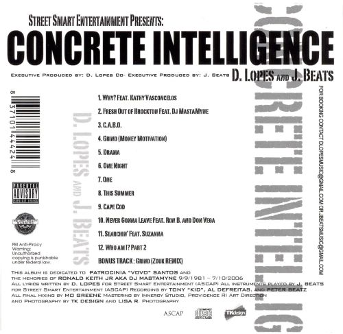 Concrete Intelligence