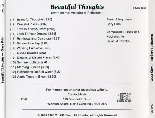 Beautiful Thoughts (Instrumental Melodies of Reflection)