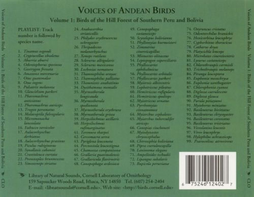 Voices of Andean Birds, Vol. 1: Birds of the Hill Forest of Southern Peru a