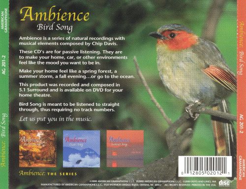 Bird Song: Ambience