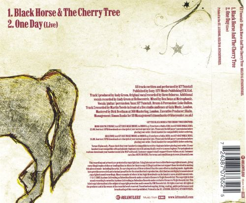 Black Horse and the Cherry Tree
