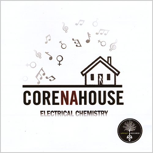 Electrical Chemistry