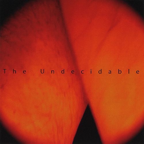 The Undecidable 1994-2007