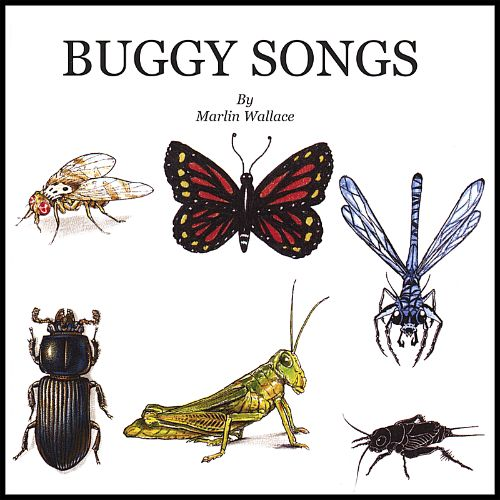 The Corillions - Buggy Songs