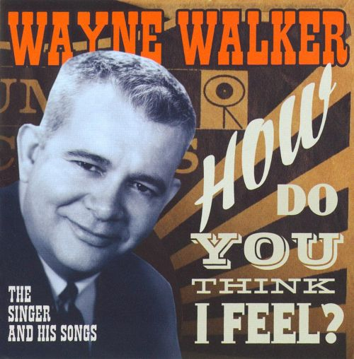How Do You Think I Feel?: The Singer and His Songs