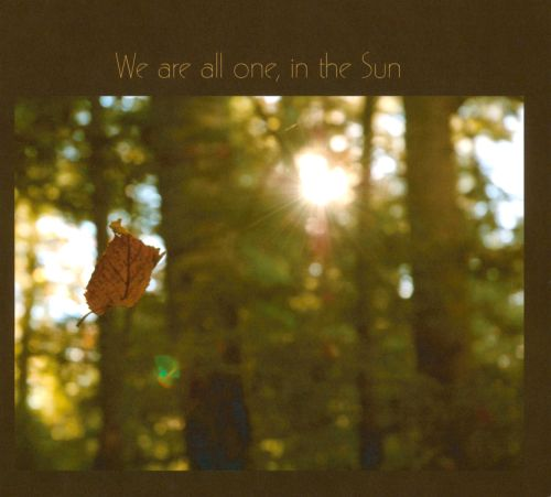 We Are All One, In The Sun: A Tribute To Robbie Basho