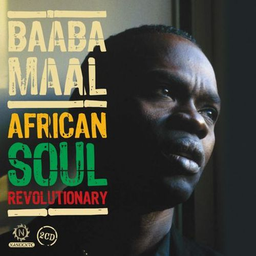 African Soul Revolutionary: The Early Years