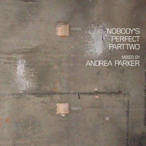 Nobody's Perfect, Vol. 2: Mixed by Andrea Parker