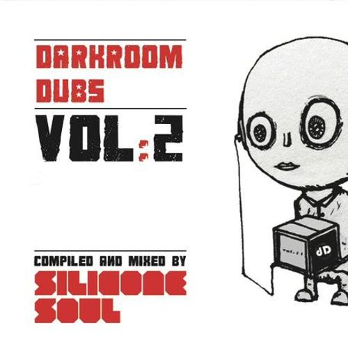 Darkroom Dubs Compiled & Mixed by Silicone, Vol. 2