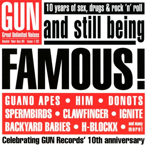 Gun: and Still Being Famous! 10 Years of Sex, Drugs & Rock 'N' Roll