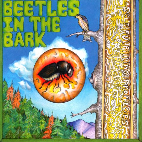 Beetles in the Bark