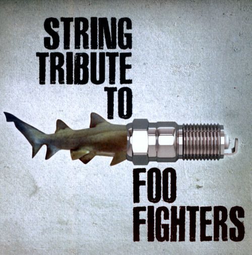 String Tribute to Foo Fighters