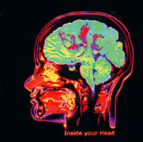 Inside Your Head