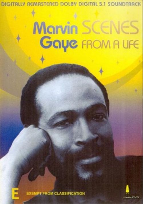 Marvin Gaye: Scenes from a Life