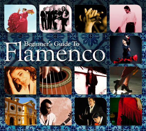 Beginner's Guide To Flamenco