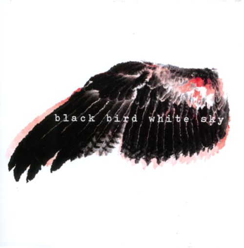 Black Bird White Sky