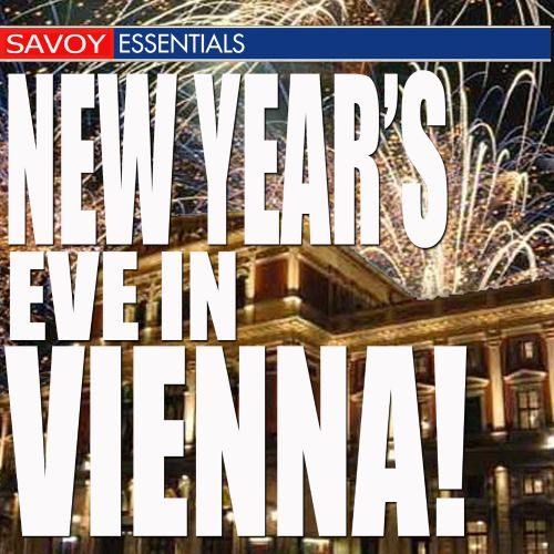New Year's Eve in Vienna!